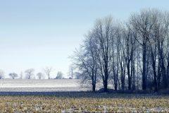 Champs enneigés: les producteurs de grains sollicitent le gouvernement