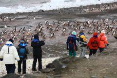 L'Antarctique, uniquement protégé par les professionnels du tourisme
