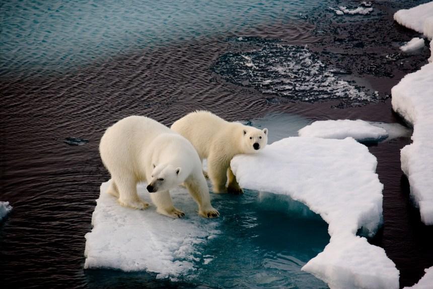 Octobre plus chaud que jamais, un nouveau (triste) record pour le climat