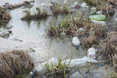 Plaie des océans, les microplastiques contaminent aussi les fleuves européens