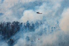 Australie: les incendies aux portes de Melbourne
