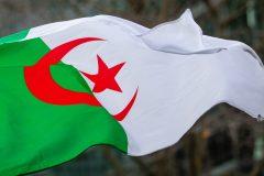 Algérie: des milliers de personnes à Alger ont fêté les un an du «Hirak»