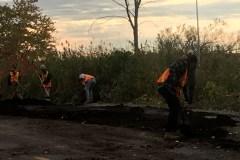 Fin des travaux des bandes riveraines à L'Île-des-Soeurs