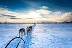 5 activités originales pour profiter des joies de l'hiver