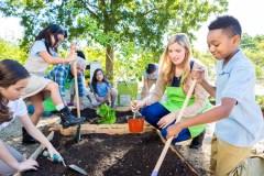 L'écoéducation pour faire face aux changements climatiques