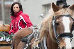 Le Vieux-Montréal tire un trait sur les visites guidées en calèche