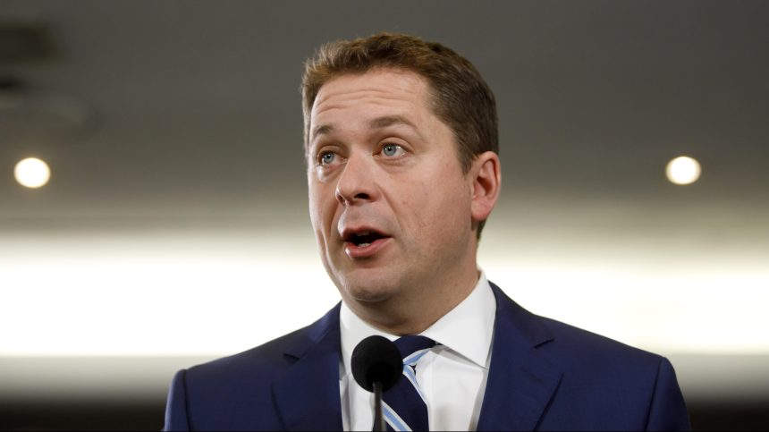 Pas question de se laisser distraire par la course à la direction, selon Scheer