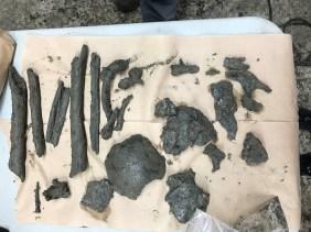 photo 4 restes humains