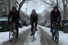 Norvatis, entreprise vélosympathique