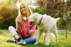 Spotify: des playlists pour vos animaux de compagnie