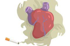 Semaine pour un Québec sans tabac 2020: flash sur les maladies du cœur