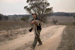 Incendies en Australie: 20% des forêts ont été détruites