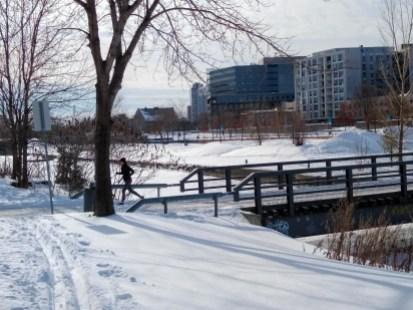 Le Vieux Montréal est un bel endroit pour faire du ski de fond. La piste pourrait être reliée au Bassin Peel.