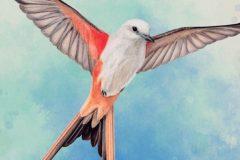 Jeu du Lundi : Wingspan