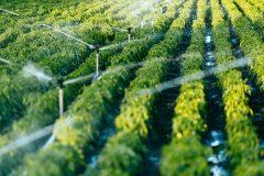 L'industrie agricole demande aux Québécois de travailler dans des fermes