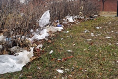 Jour de la Terre: chacun sa corvée de propreté