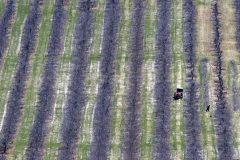 Des craintes au sujet des travailleurs agricoles, sans une meilleure protection