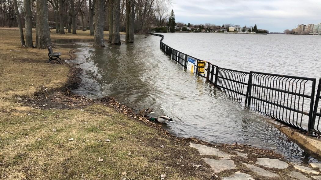 Coronavirus : inondation au parc Beauséjour
