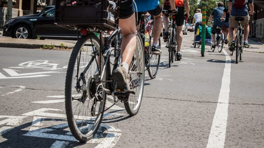 Un premier «jardin de circulation à vélo» verra le jour dans le parc La Fontaine