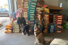 Un programme pour prévenir les abandons d'animaux de compagnie