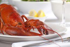 Le homard gaspésien arrive en ville… et il est accompagné!