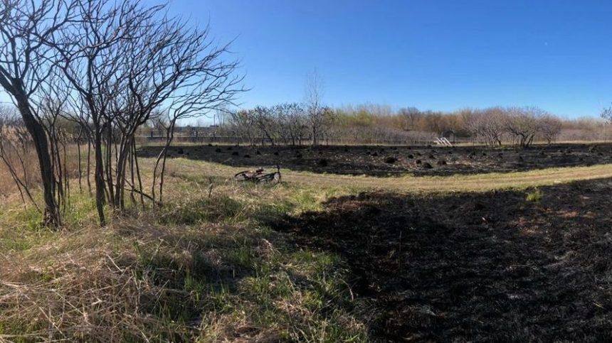 Pointe-aux-Trembles : un feu de broussailles dans le parc-nature