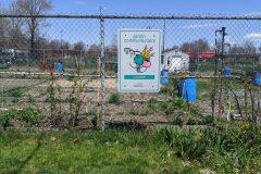 Jardins collectifs : ce qui va changer cette année dans Rosemont-La Petite-Patrie