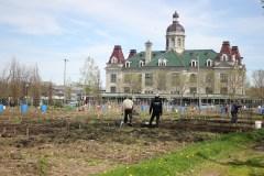 MHM: Réouverture progressive des jardins communautaires