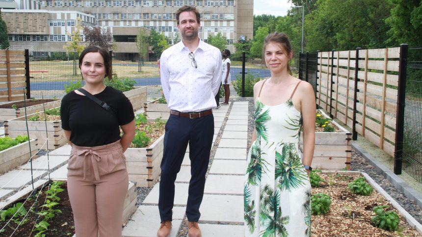 Un nouveau jardin communautaire à l'école Calixa-Lavallée