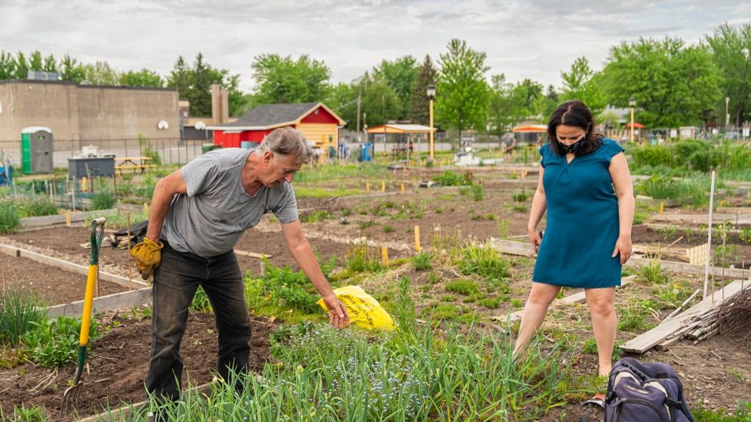 L'arrondissement Rivière-des-Prairies – Pointe-aux-Trembles lance son plan d'action en faveur de l'agriculture urbaine pour les trois prochaines années.