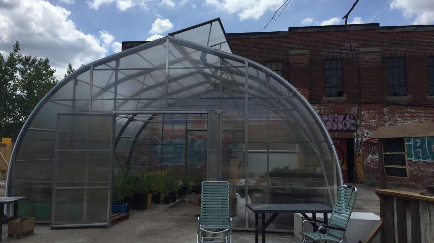 Projet d'agriculture urbaine au Bâtiment 7