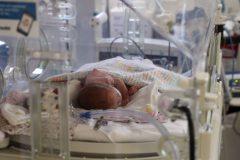 La COVID-19 augmenterait les risques de naissances prématurées