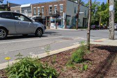 Des saillies de trottoir écologiques dans Rosemont