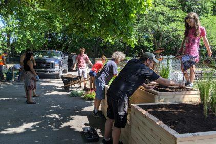 Des citoyens se mobilisent pour revitaliser le parc Léon-Provancher