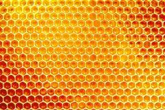 Les bienfaits du miel dans nos cosmétiques