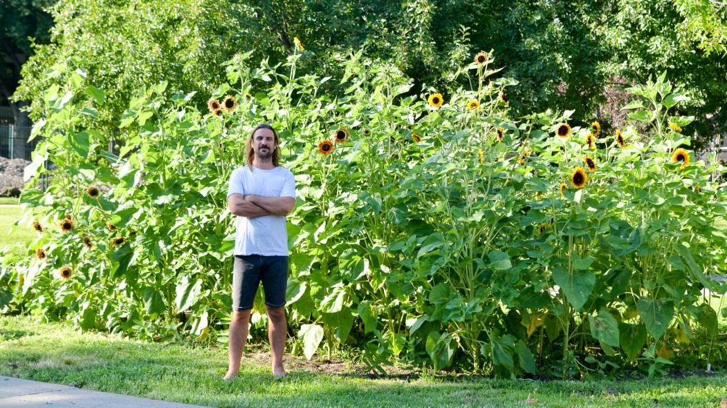 Sean Cronin devant son jardin de tournesols et d'asclépiades.