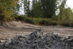 Le remblayage d'un marais inquiète dans le secteur du Technoparc