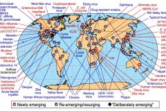 COVID-19: appel pressant de l'OMS à la solidarité mondiale