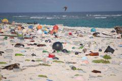 Plastique : le Canada exporte l'équivalent en poids de 800 baleines par an