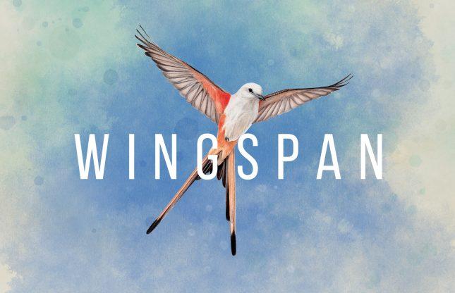 Wingspan, la version numérique officielle sur Steam