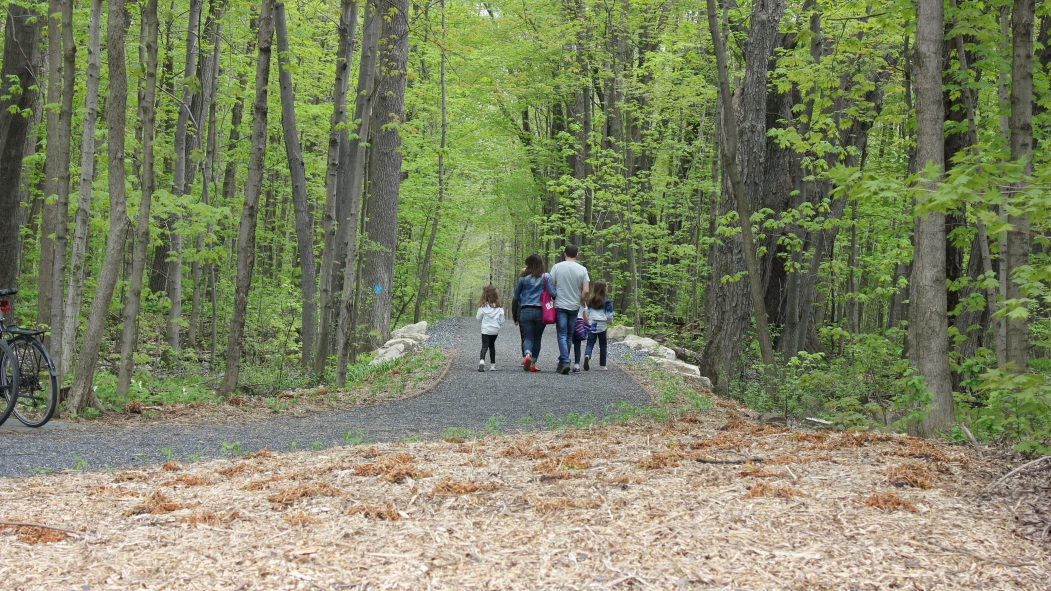 Bois-de-Saraguay sentier