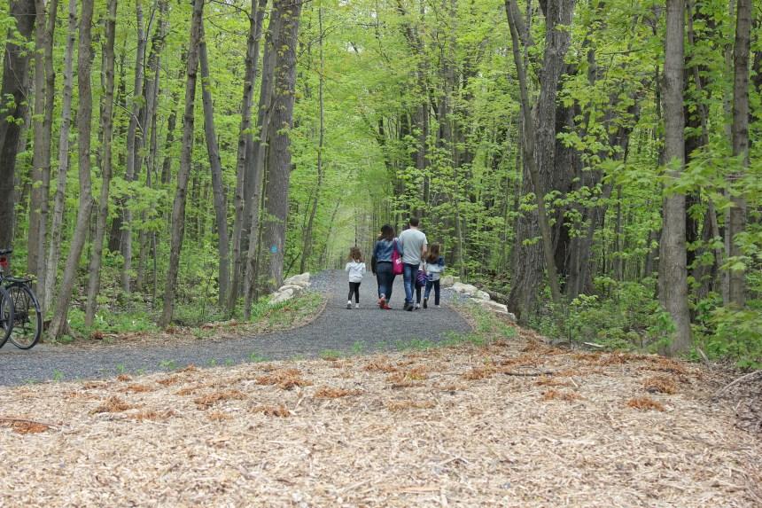 Plus de 15 000 nouveaux arbres au Bois-de-Saraguay