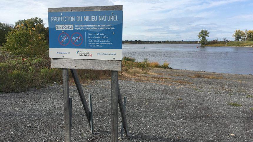 Restauration d'une berge de la rivière des Prairies