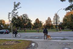 Parc Père-Marquette: un feu de circulation dans les cartons