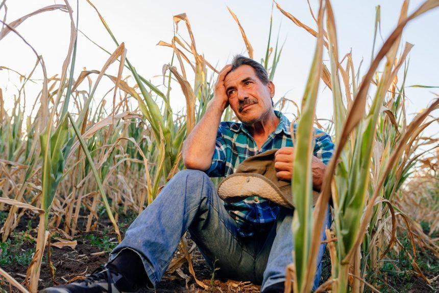 La santé mentale toujours taboue dans le milieu agricole