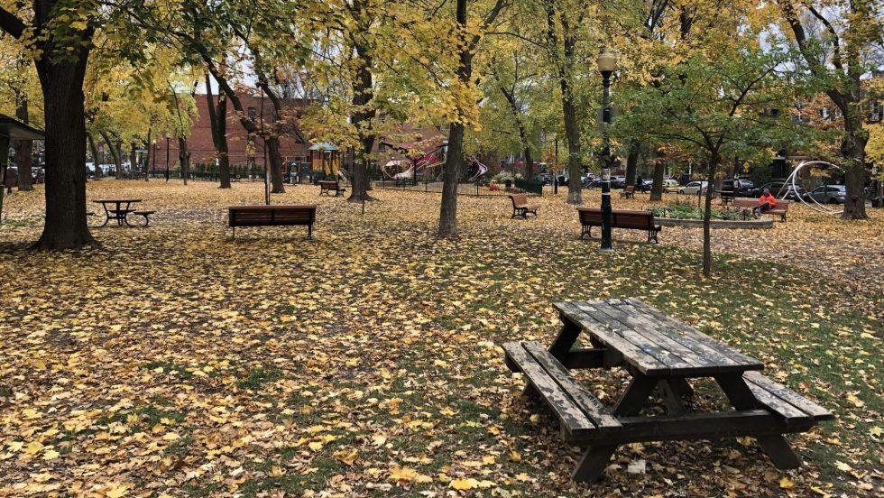 Parc Rosemont-La-Petite-Patrie