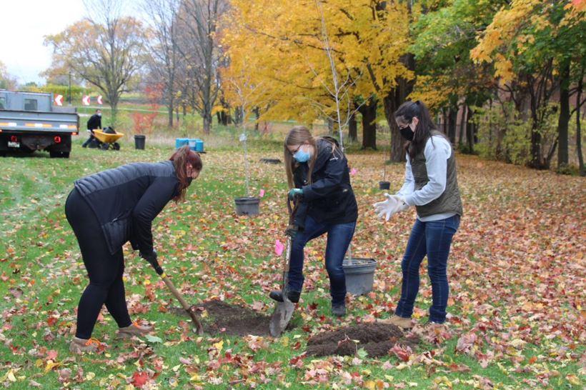 Plantation d'arbres en accéléré au campus Macdonald de McGill