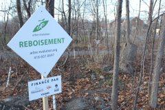 Parc Michel-Bourdon: des arbres pour la communauté