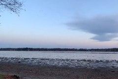 Contemplez des milliers d'oies décoller vers la côte est avant l'hiver