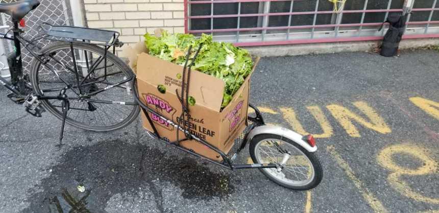 17 000 kilogrammes d'aliments invendus récupérés